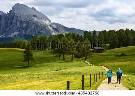 Group of middle aged Hikers walking on a mountain trail in Alpe di Siusi, Northern Italy