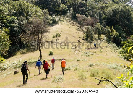 Group of Mountaineer Walking on deep forest