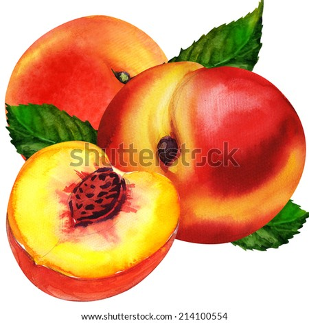group of peaches - stock photo
