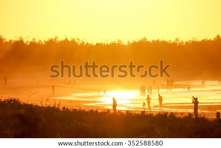 Group of people at sunset on the beach