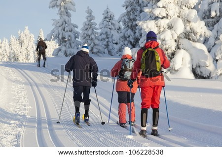 Group of people cross country skiing on beautiful winter morning - stock photo