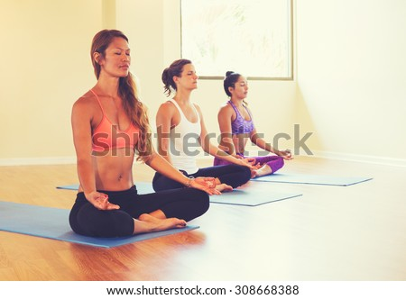 Group of People Relaxing and Meditating in Yoga Class. Wellness and Healthy Lifestyle. - stock photo