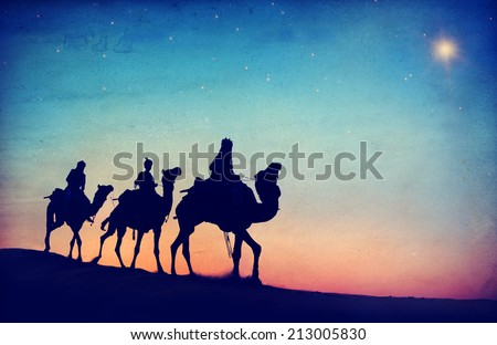 Group of People Riding Camel Isolated on Background - stock photo