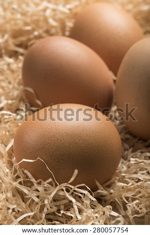 group of raw eggs resting on straw - stock photo