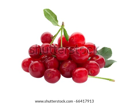 Group of ripe cherries on a white background.