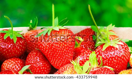Group of ripe, organic strawberry in box on blurred green background, selective focus - stock photo
