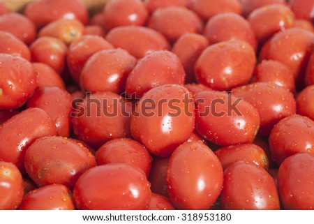 Group of  ripe red tomatoes background - stock photo