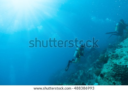 Group of scuba divers exploring sea bottom. Underwater life with beautiful rocks and coral