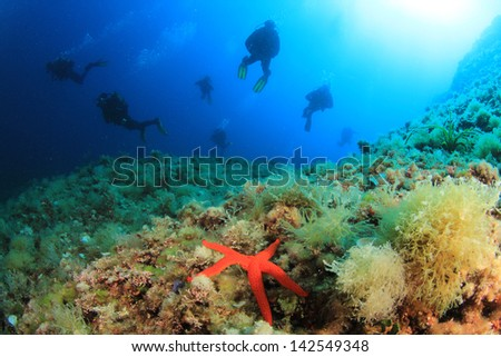 Group of Scuba Divers underwater in Mediterranean Sea - stock photo