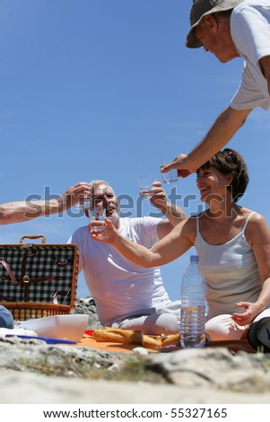 Group of senior having a picnic at the seaside - stock photo