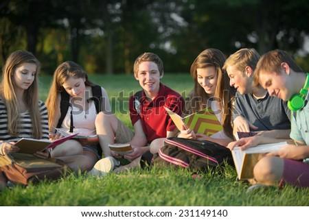 Group of six Caucasian teen students doing homework - stock photo
