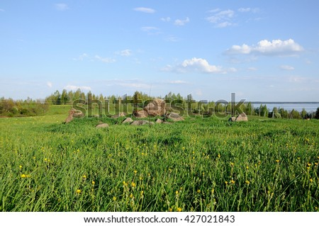 group of stones in a green grass under a spring clear sky