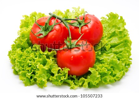 Group of tomato and green salad  isolated on white background