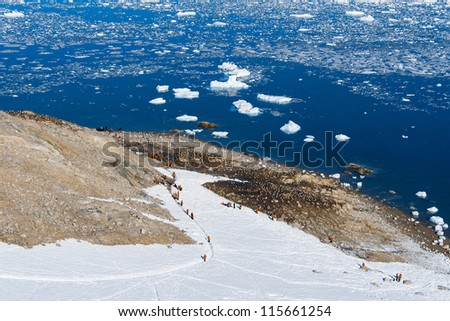Group of tourists climb on the mountain, Antarctica - stock photo