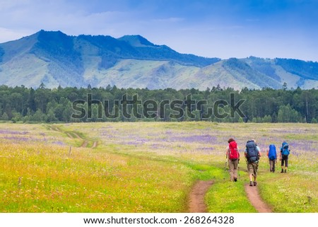 Group of tourists with backpacks and Trekking pole walking on a dirt road among flowers field rhododendron in mountain - stock photo
