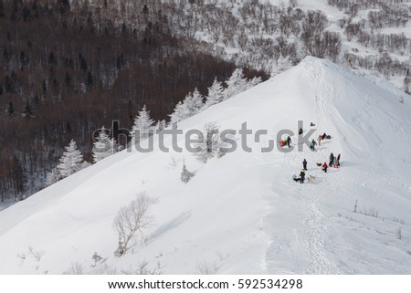 group of tourists with dogs having a rest on a beautiful snow capped slope