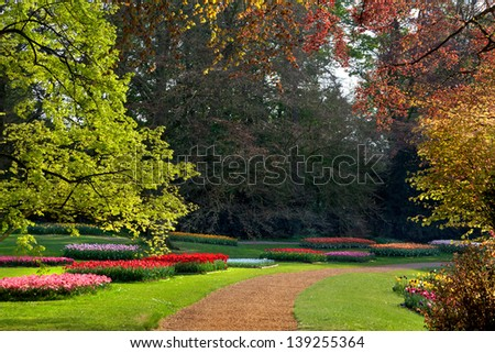 Group of tulips and hyacinths in the park. Spring landscape.