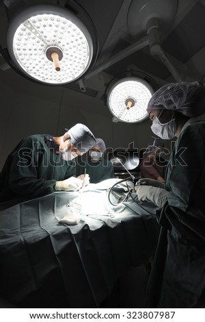 group of veterinarian doctor in operation room for laparoscopic surgical take with selective color technique and art lighting