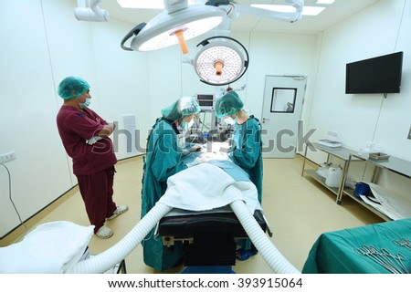 group of veterinarian surgery in operation room at hospital