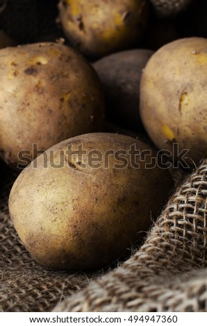 Group of whole, fresh, still soiled potatoes, harvested into a hessian sack.