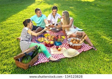 Group of young attractive friends having a picnic, sitting on a red checked cloth on green grass and toasting each other with glasses of wine - stock photo