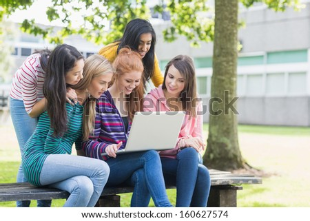 Group of young college girls using laptop in the park
