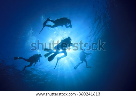 Group scuba divers diving underwater in sea: silhouette and sun