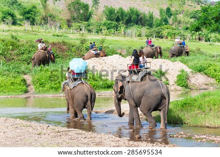 Group tourists to ride on an elephant in forest at Chiang mai,thailand - stock photo