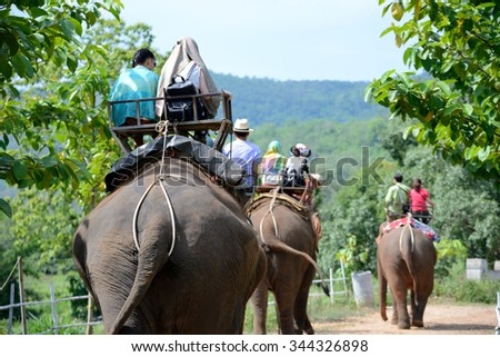 Group tourists to ride on an elephant in forest at Chiang mai, thailand - stock photo