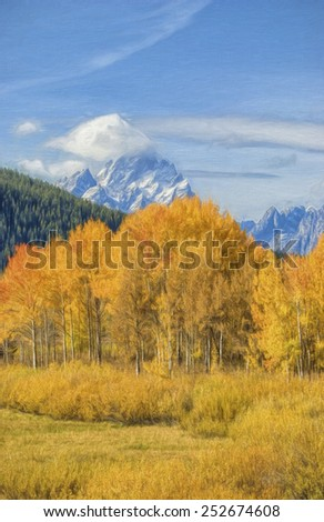 Grove of Aspens in the Tetons during Fall - stock photo