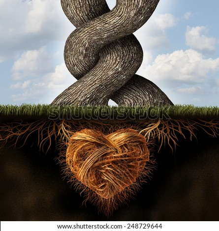 Growing in love relationship and romance concept as two trees tangled together in a passionate loving embrace with underground roots shaped as a heart. - stock photo