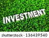 Growing Investment and Wise Growth of Wealth - stock vector