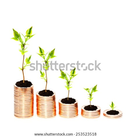 Growing money concept - stock photo