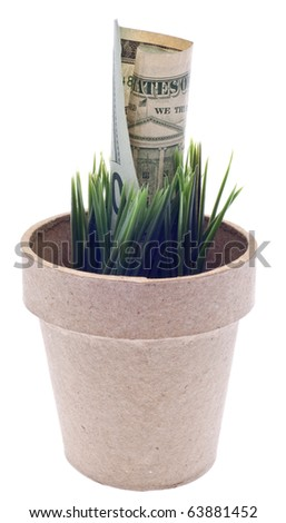 Growing Money Concept Isolated on White with a Clipping Path.