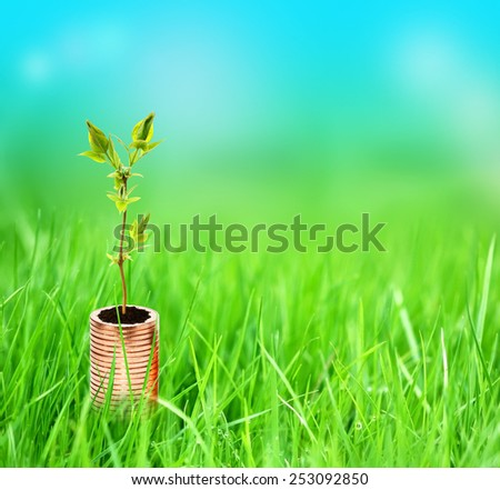 Growing money concept on grass and sky background - stock photo