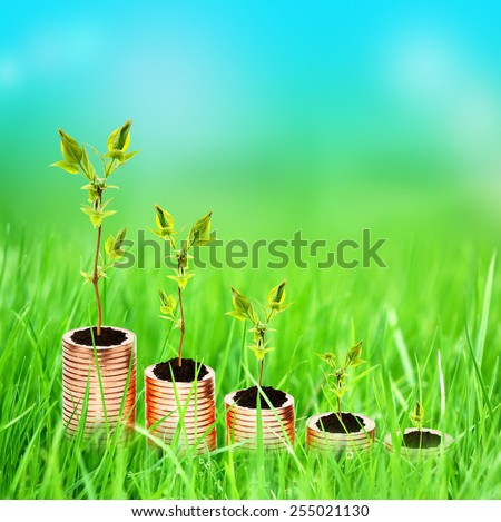 Growing money concept on nature background - stock photo