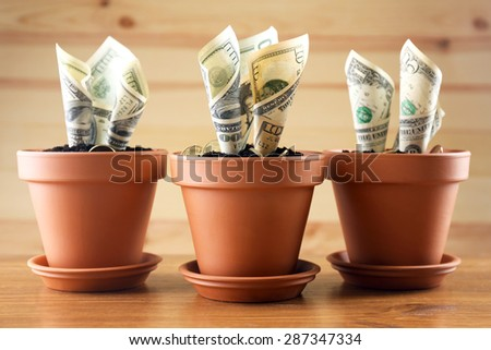 Growing money in flowerpots on wooden background - stock photo