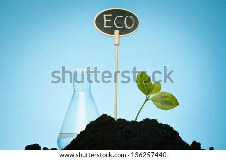 growing organic plants - stock photo