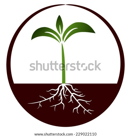 Growing plant in the circle- Illustration - stock photo