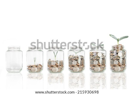 Growing plant step with coin money ,saving for investment in the future - stock photo