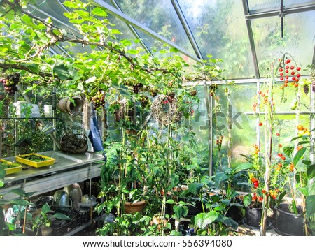Self Sufficient Stock Images Royalty Free Images