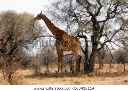 Grown Giraffe standing proud next to a large tree painting.
