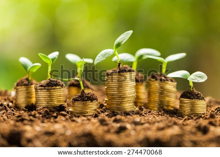 Growth, business, money. - stock photo