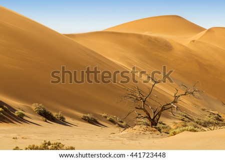 Growth of temperature and climatic changes on Earth. African landscape, dunes and nature of Namib desert, Sossusvlei, Namibia, South Africa