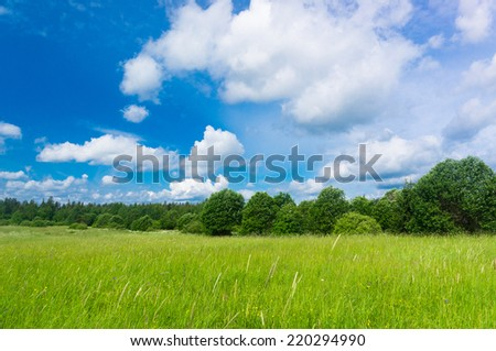 Growth Season Nobody Outside  - stock photo