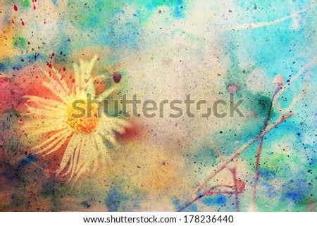 grunge artwork with chamomile and watercolor smudges - stock photo