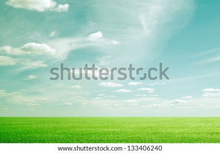grunge beauty blue sky and green grass - stock photo