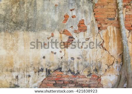 Grunge brick wall coveraged by root tree, can be used for background