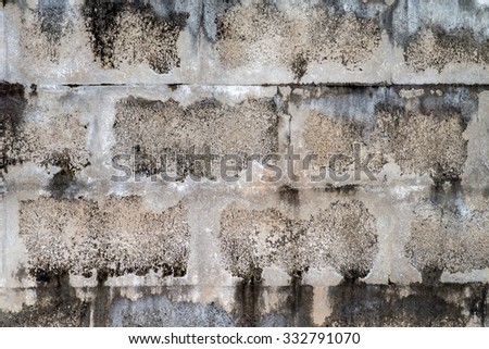 grunge cement wall, cement texture background