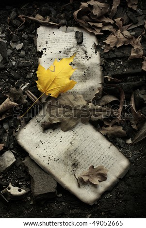 grunge composition with yellow autumn leaf